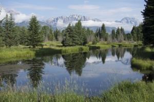 GTeton Pond Reflection