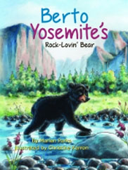 Berto Yosemite's Rock-Lovin' Bear
